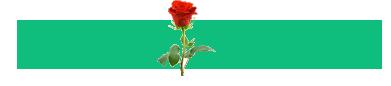 Rose Home – Moshi